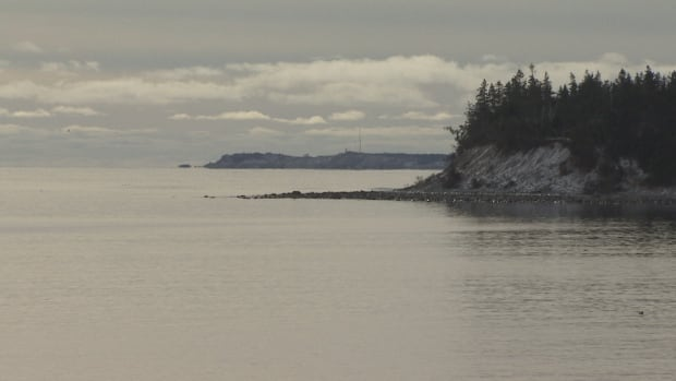 The federal government will invest more than $80 million to protect Canada's oceans under a $1.5-billion oceans protection plan.