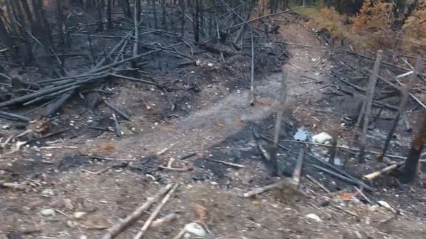 Researchers are sending drones into the Alex Fraser Research Forest near Williams Lake, B.C., to learn more about wildfire behaviours and assess the damage done by 2017's fires.