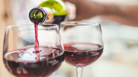 'Have a bit of a strategy:' Vancouver festival boasts 4,500 wines to choose from