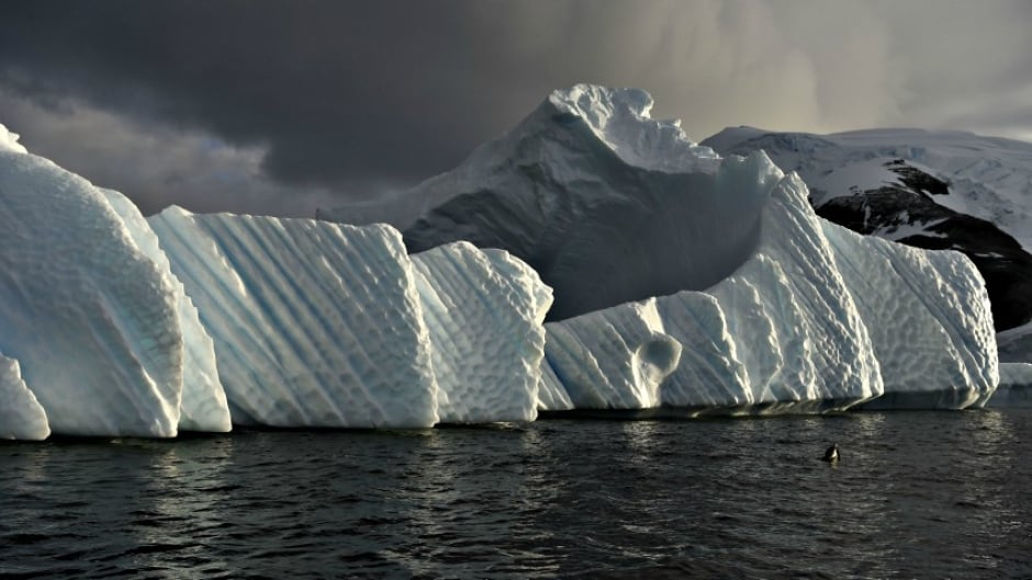 An iceberg is pictured in the western Antarctic peninsula.