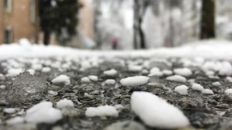 More snow forecast as chilly temperatures linger in Metro Vancouver
