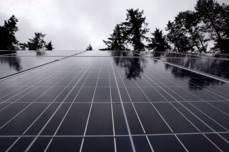 Want to soak up the savings from solar? Here's what you