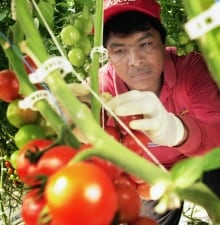 Migrant Workers Health 20110418