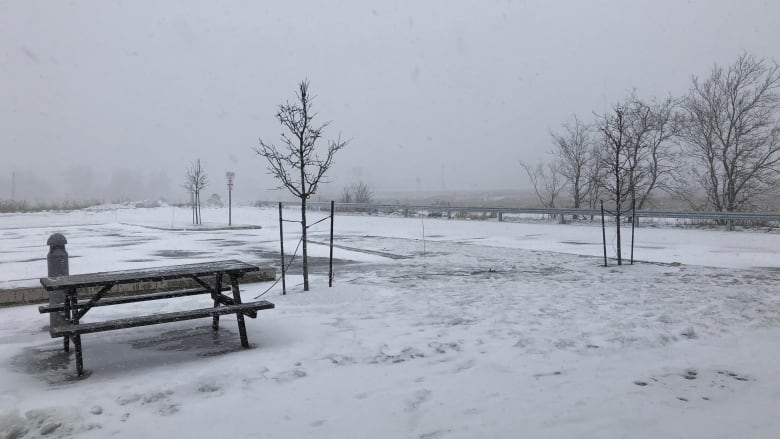 Christmas Day in New Brunswick brings blizzard, snow storm warnings ...