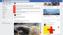 Iqaluit sell/swap sealskin post