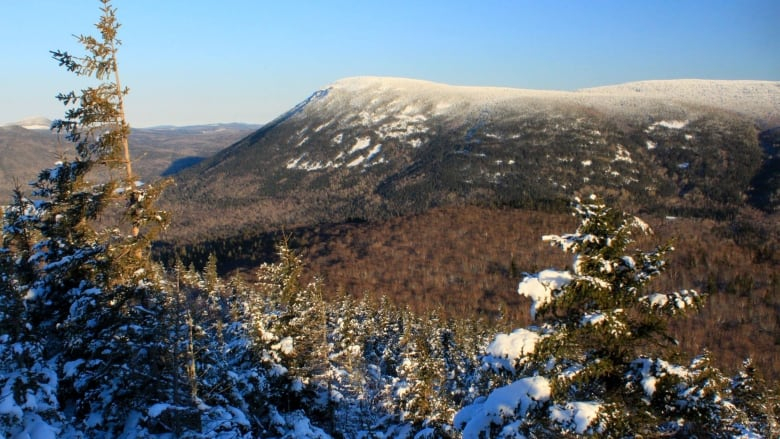 get outside and enjoy it the joys of winter hiking cbc news