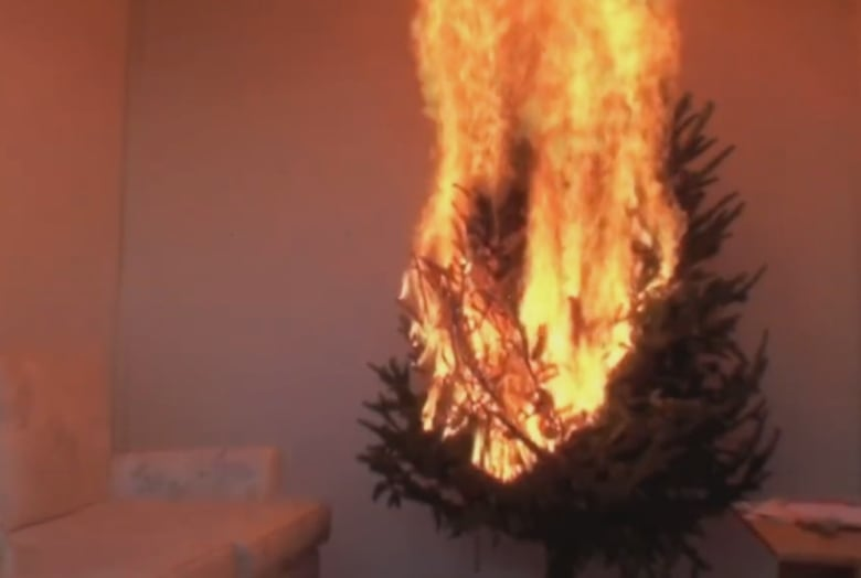 Christmas Tree On Fire.Dried Out Christmas Trees An Accident Waiting To Happen