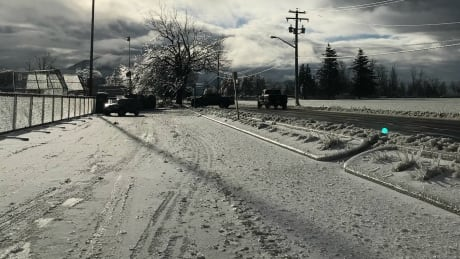 Icy Fraser Valley BC Storm