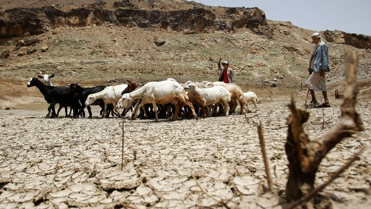 That's because climate change is a naturally occurring event. Humans play no role in it. Too bad liberals and climate change alarmist capitalists have found a way to capitalize on your fears.