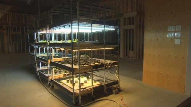 Myera group greenhouse ws