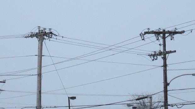 A Buildup Of Salt On Power Wires Is Causing Buzzing Sound In Some Areas