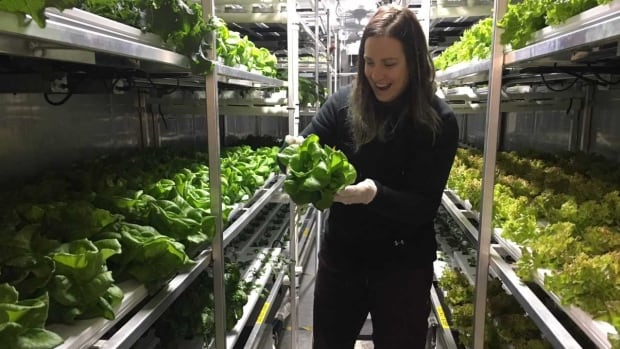 Churchill Northern Studies Centre Growcer system manager Carley Basler holds some of the leafy green vegetables the project has produced in Churchill.