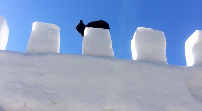 How to build your own magical snow fort with tips from the