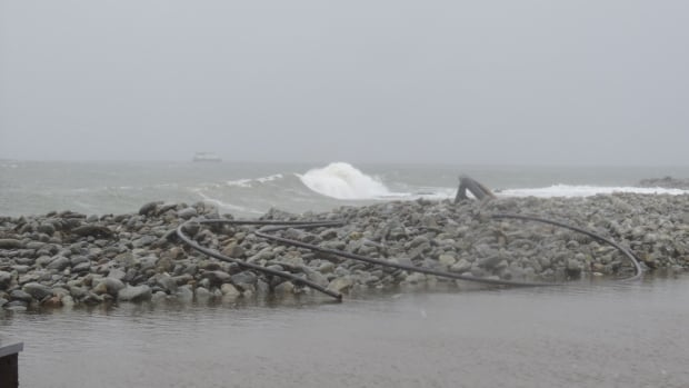 Plastic piping has washed up on the shore along Jordan Bay, N.S.