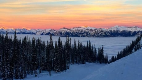 Kicking Horse Mountain Resort vista