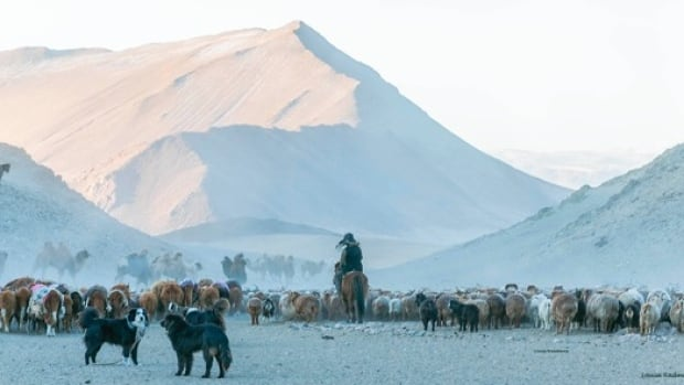Radmore followed the Kazakh clan from February to March 2017 through Mongolia's Altai Mountains as they travelled with their animals to their spring camp.