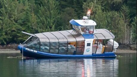 Stellar Sea bear-watching boat ran aground off Vancouver Island West Coast