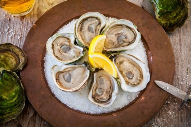 Oysters in Vogue.com