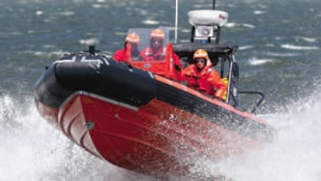 Search underway for missing kayaker in the Strait of Belle Isle