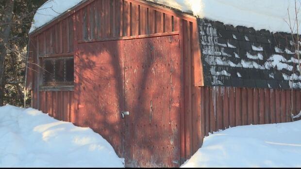 BNPP shed