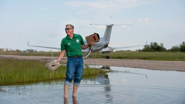 Saskatchewan CBC News - Current time in saskatchewan