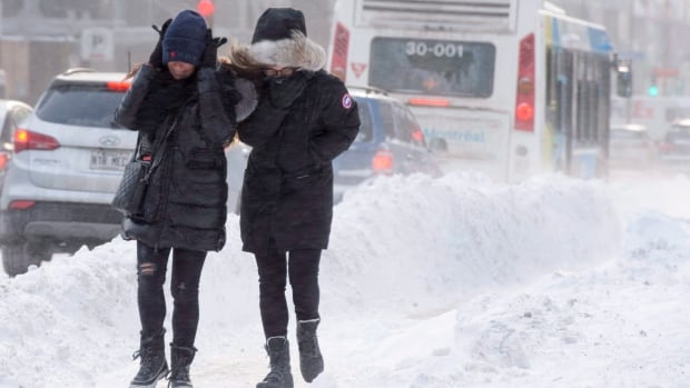 That Recent Brutally Cold Weather? It's Getting Rarer