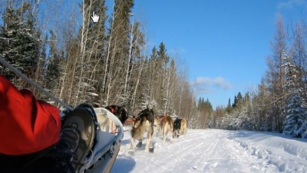The beauty and quiet of Saskatchewan's wilderness has to be experienced to be appreciated, says Sundogs Sled Excursions owner Brad Muir. He says it's inspirational when he sees the awed response of visitors taking part in dog sledding and enjoying the sights of nature.