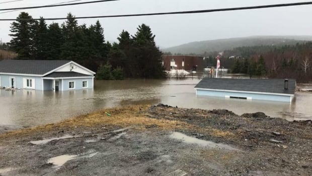 There are vehicles underneath the water submerging the Jesso family's home and garage in Benoit's Cove on Saturday.