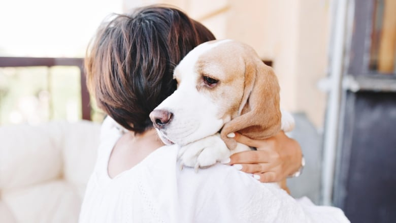 COVID-19 pandemic: What to do with pets during self-isolation