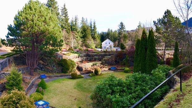 Prince Rupert's Sunken Gardens were 'balmy' Jan. 14 as temperatures rose well above the norm.