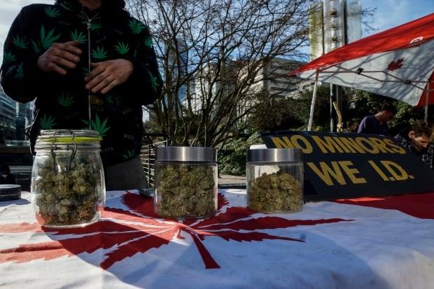 Robson Square Unlicensed Marijuana Vendors Weed Pot