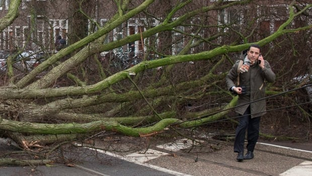 Toll rises from deadly storm as German trains resume service