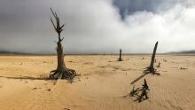 South Africa Cape Town Drought