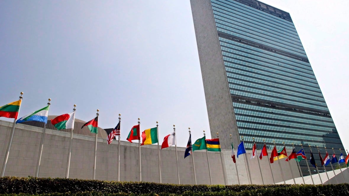 Politicized UN committee using 'repeated and arbitrary deferrals' to block NGOs, critics say