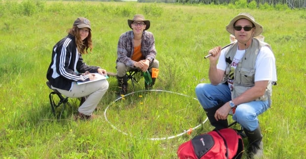 University of Winnipeg researchers examine host plants for the larvae of the Poweshiek skipperling