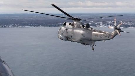 Sea King Retirement 20180119