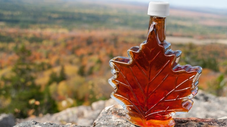 Please Not The Syrup Climate Change Could Extinguish Sugar Maple