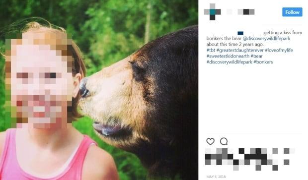 Discovery Wildlife Park Bear