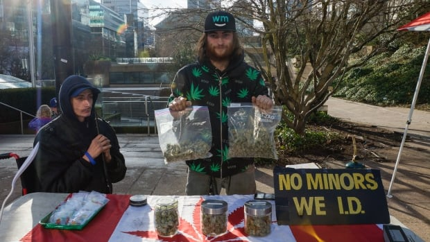 A vendor sells marijuana at a stall in Robson Square in Vancouver. The stalls are operating without a licence and are illegal.