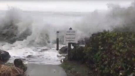 Tofino storm 2018