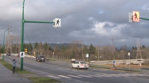 Another pedestrian hit along Burnaby's Cariboo Road