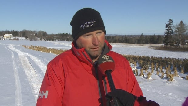 'I understand there hasn't been much snow and you have a sled you want to get out and use it, but [use] a little bit of caution,' says Greg MacKenzie.