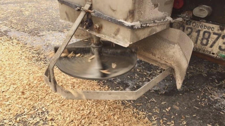 quebec town swaps out salt for eco friendly wood chips on icy roads