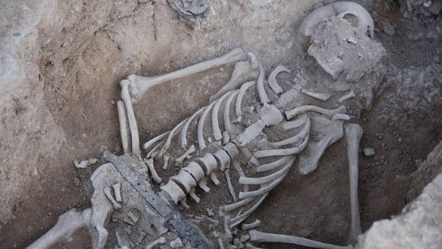 The remains of a victim of the Spanish Civil War have been excavated from a mass grave near the town of Soleràs.