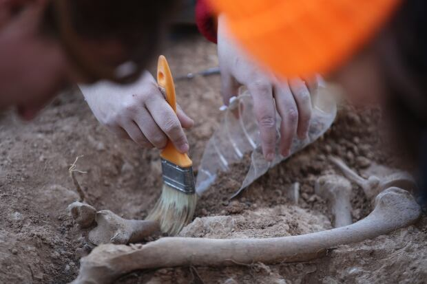 Brushing dirt