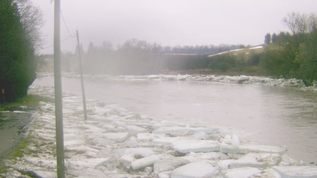 The Grand River in West Montrose as seen from a GRCA camera on the covered bridge Tuesday morning.