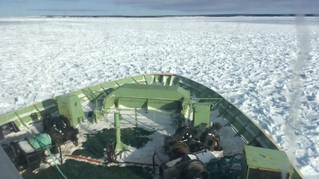 The MV Apollo is stuck in ice in the Strait of Belle Isle just outside of St. Barbe. Passengers have been told an icebreaker will be arriving sometime between 11 p.m. and midnight to help free them.