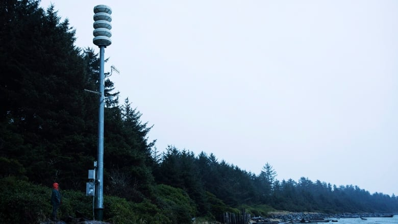 tsunami warning ends for b c after large earthquake