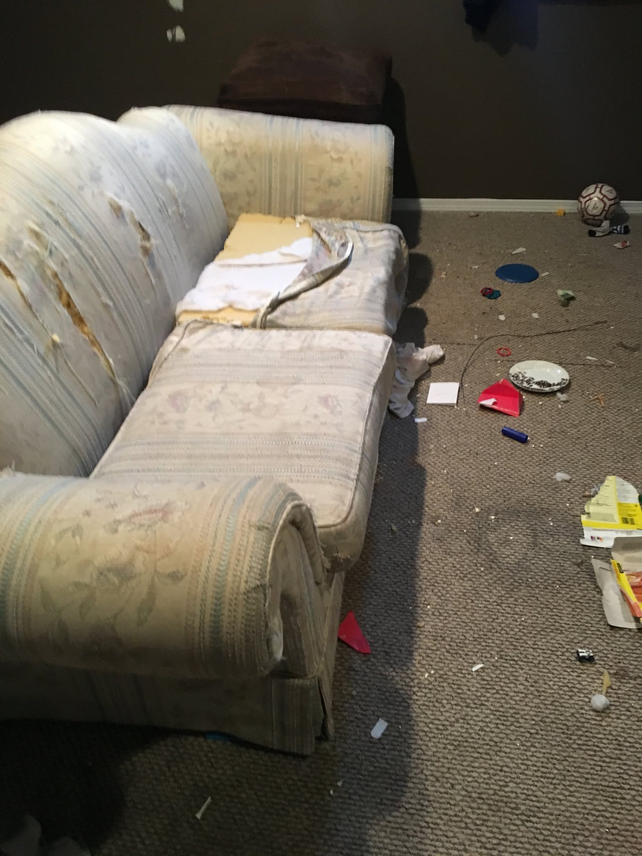 Crack pipes and beer cans': Renters trash Lloydminster house, leave