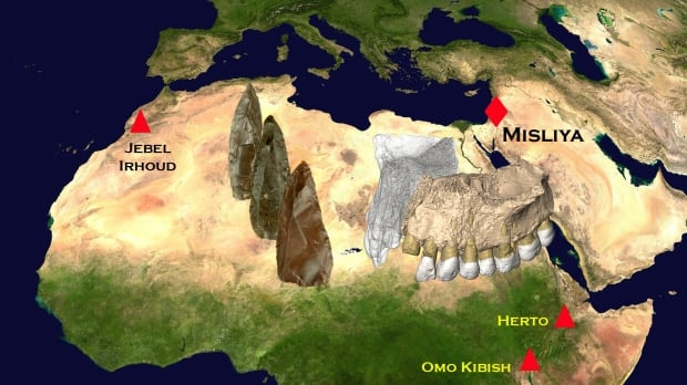 Fossil map